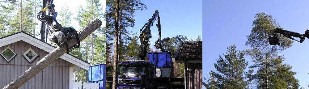 Trädfällning och skogsavverkning med gripsåg på lyftkran